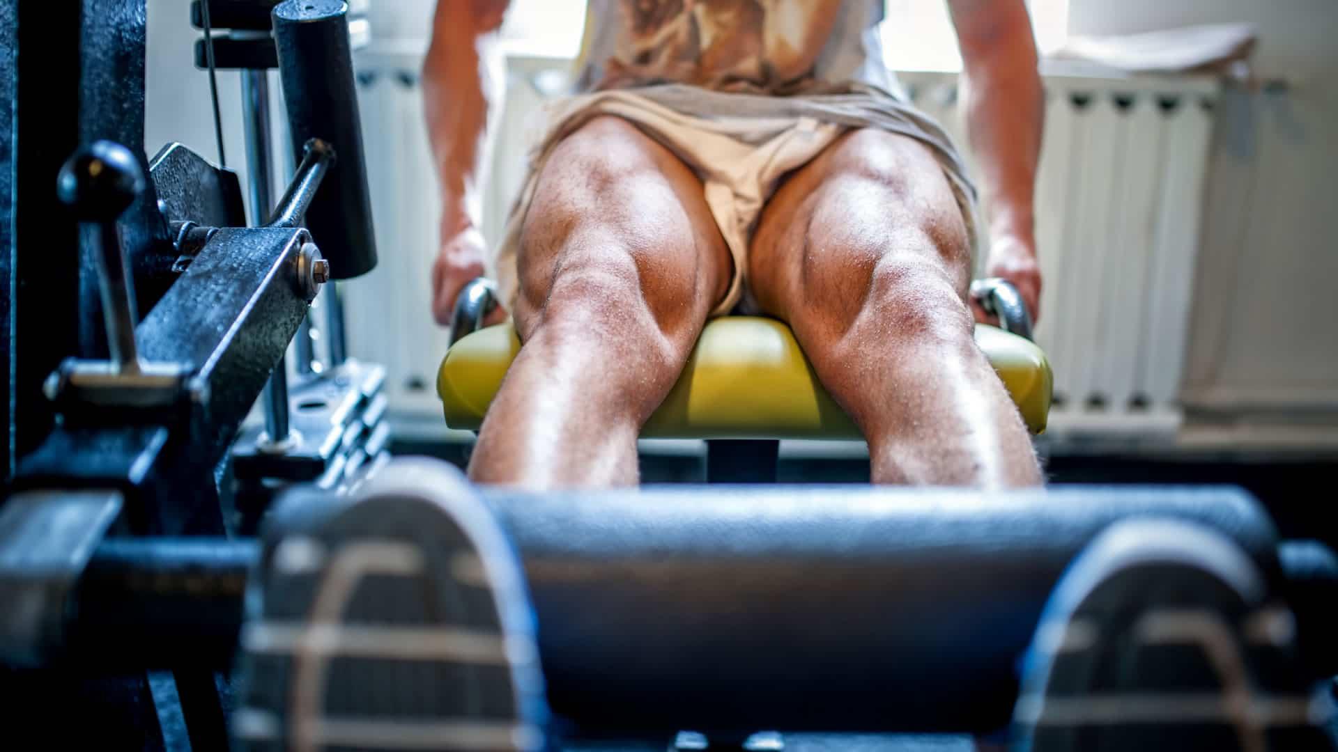 dia de piernas en el gimnasio