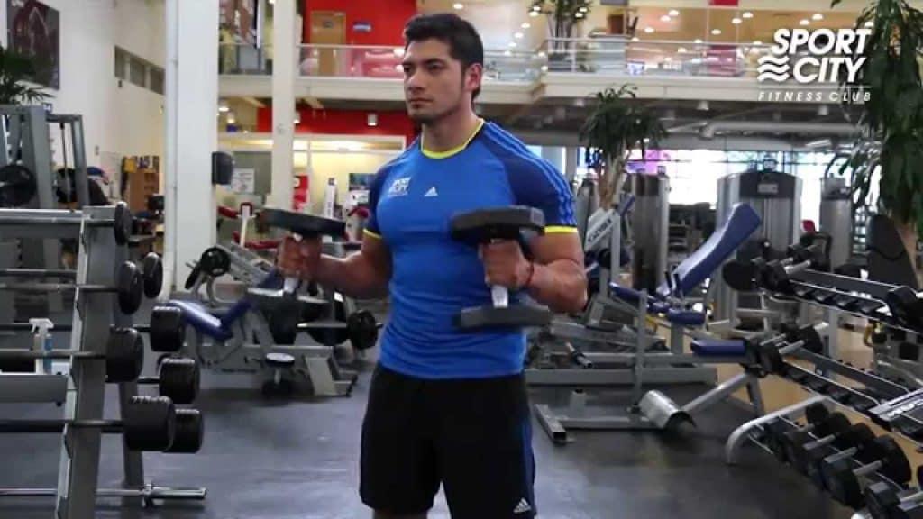 Musculación para brazos