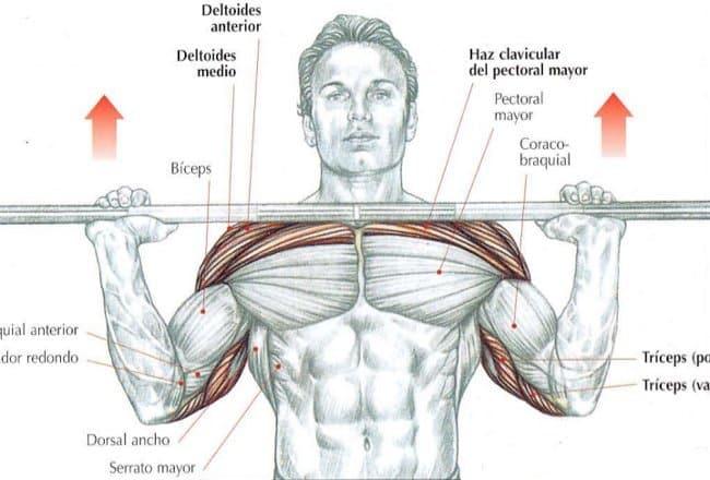 conseguir hombros fuertes