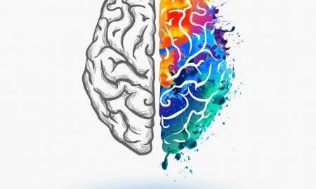 ejercicio en la estructura del cerebro
