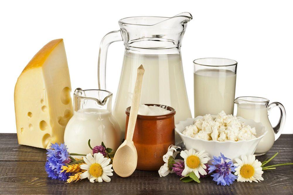 son los lácteos perjudiciales si o no