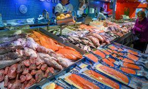Los pescados que más mercurio contienen y por qué debes evitarlos