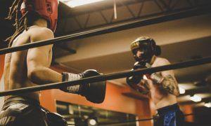 Entrena con los mejores accesorios para boxeo y kickboxing
