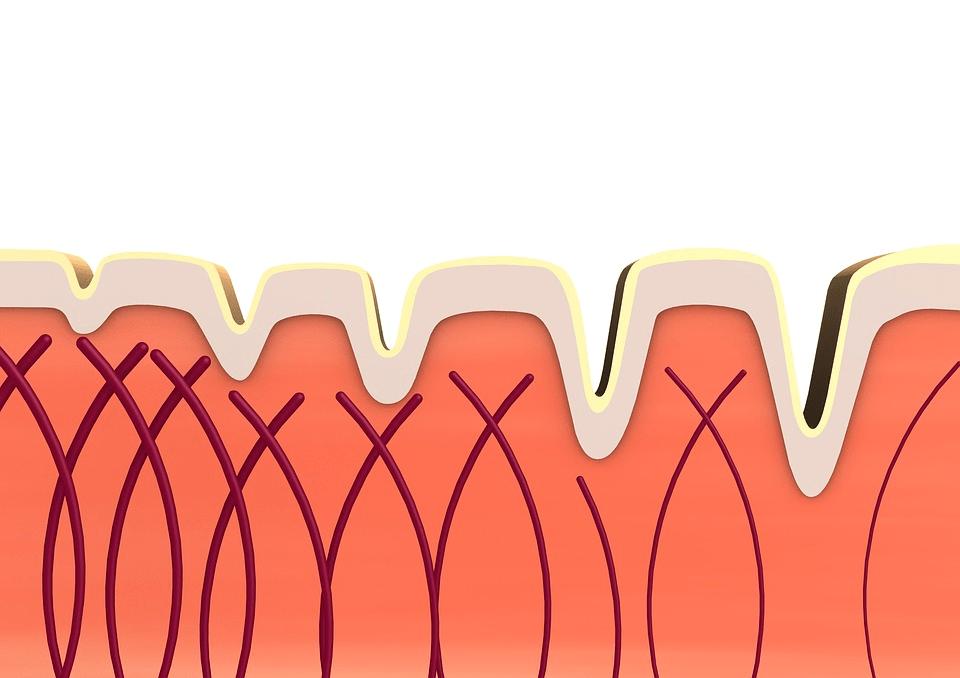 son efectivos los suplementos de colágeno