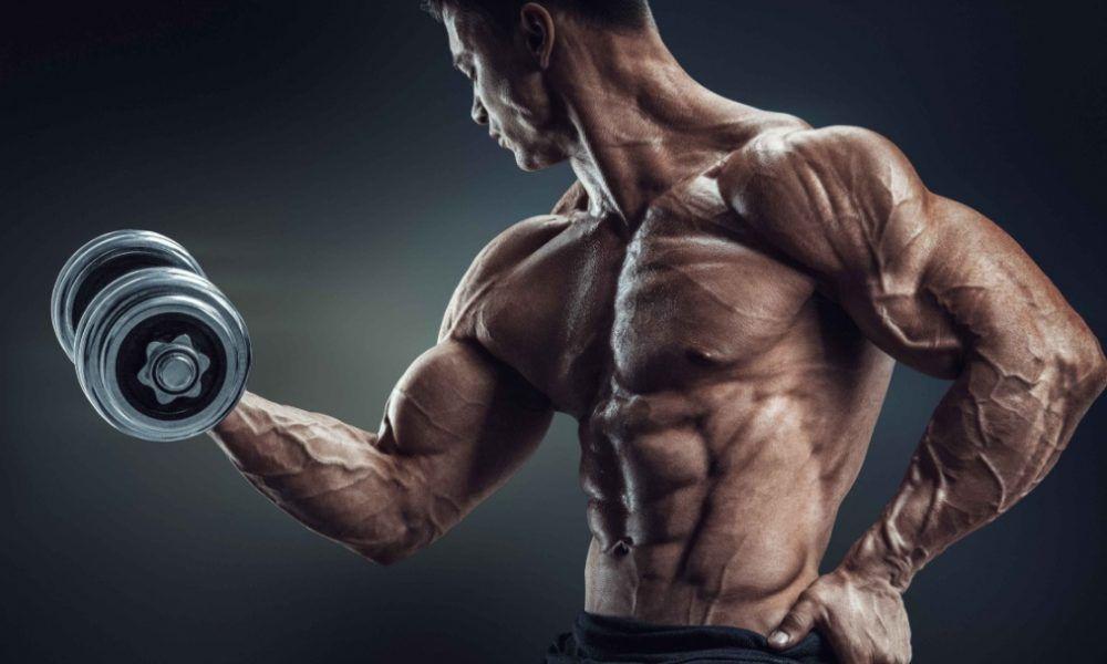cómo afecta la fatiga muscular a la hipertrofia