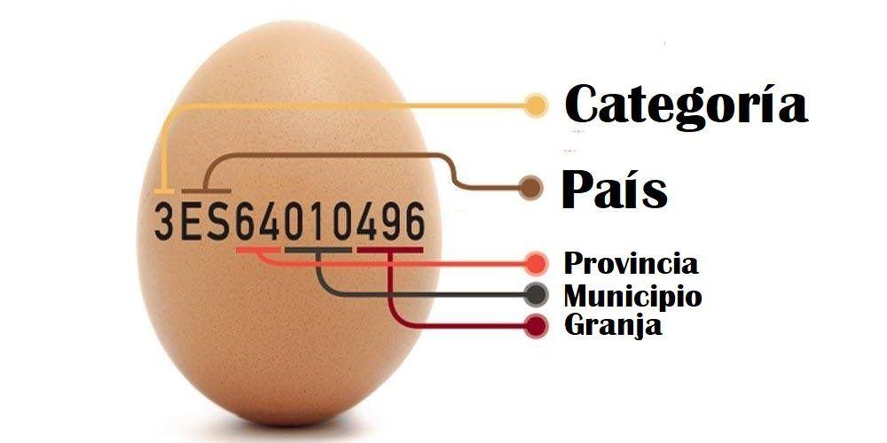 código impreso en los huevos