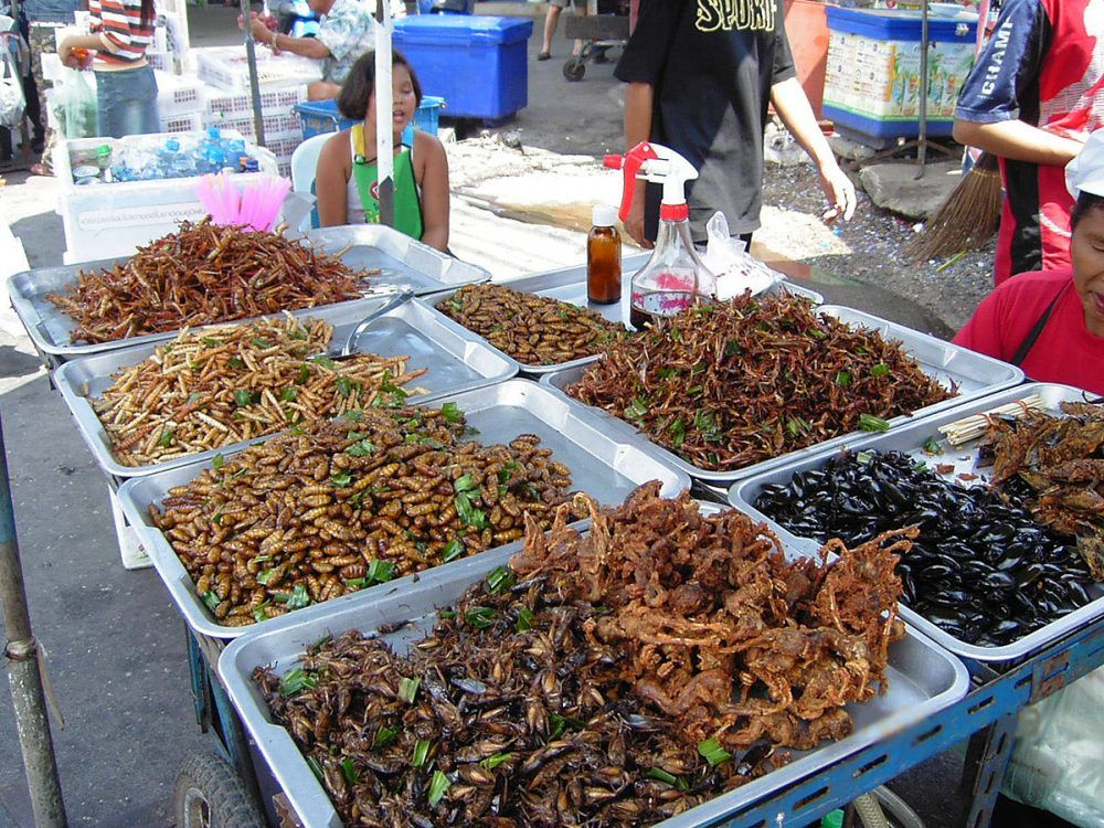 Comer insectos en Asia