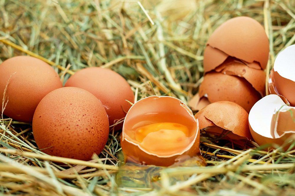 Los huevos facilitan la quema de grasas
