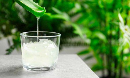 bebidas de Aloe Vera