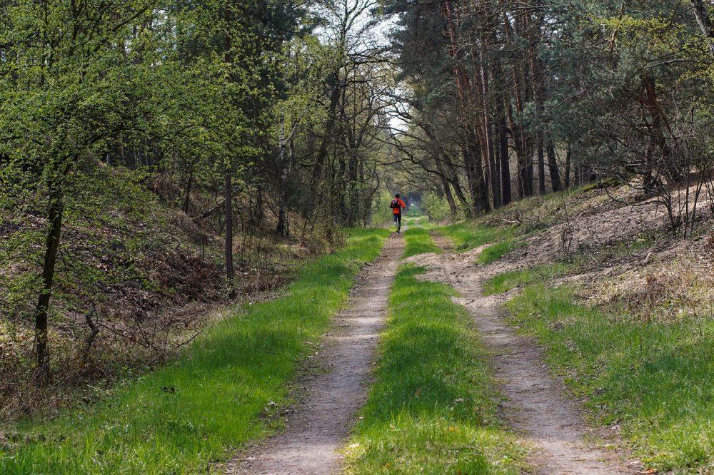 correr entrenamiento