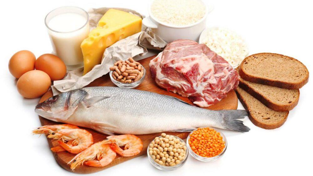 importancia de las proteínas en la recuperación